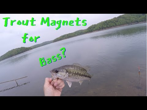 Fishing In Arkansas - One Hour On Lake Beaver, Prairie Creek Marina