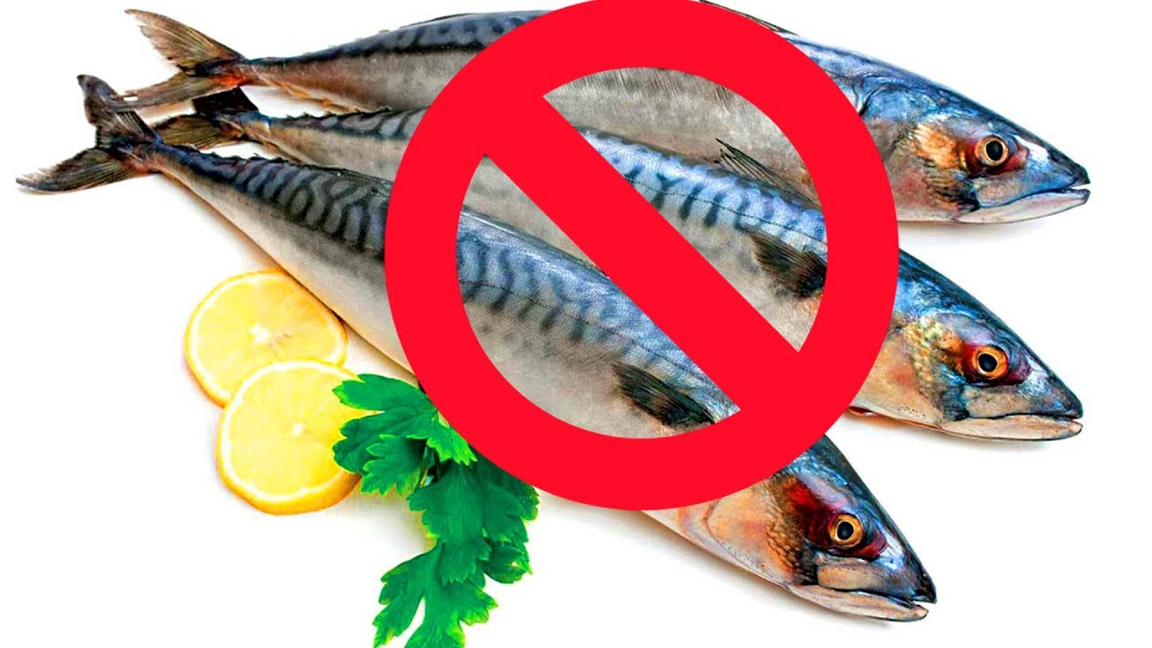 WHY DOCTORS DON'T RECOMMEND FISH