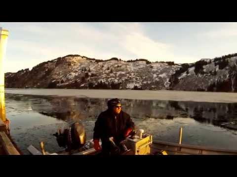 Alaska Life! Surviving the Alaska Wilderness!