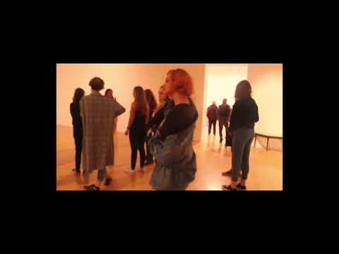 Visite à la Biennale d'art contemporain de Lyon
