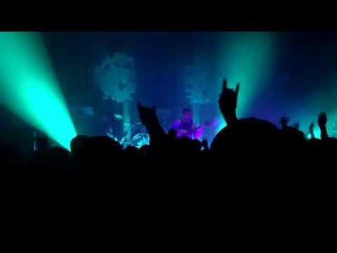 Oliver Tree - I'm Gone (Live)