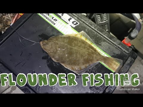 Sea Fishing For Flounders