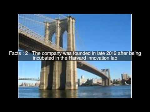 Bridge US Top  #5 Facts