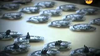 Припять 2015 'Неизвестные подробности аварии на Чернобыльской АЭС'