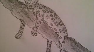КАК НАРИСОВАТЬ ЛЕОПАРДА (очень просто, для начинающих)(Здравствуйте! Предлагаю вашему вниманию видеоролик, где я показываю, как очень просто нарисовать леопарда,..., 2015-04-08T14:33:20.000Z)