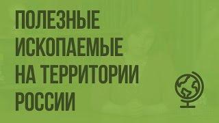 Полезные ископаемые на территории России. Видеоурок по географии 8 класс