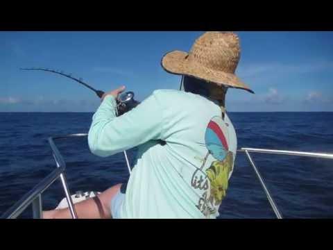 Offshore/deep Sea Fishing Off Daytona Beach Florida