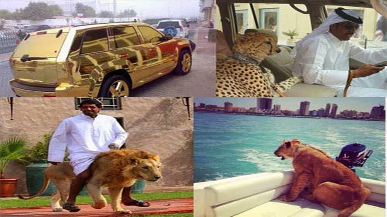 Dubai hakkında garip gerçekler ... hayrete düşeceksin !!!
