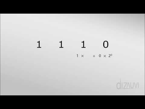 Binary Numbers : Tutorial