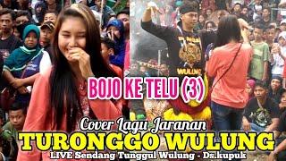 """BOJO KE TELU(3)"" (Cover Lagu Jaranan) TURONGGO WULUNG Live Sendang Tunggul Wulung Kupuk 2019"