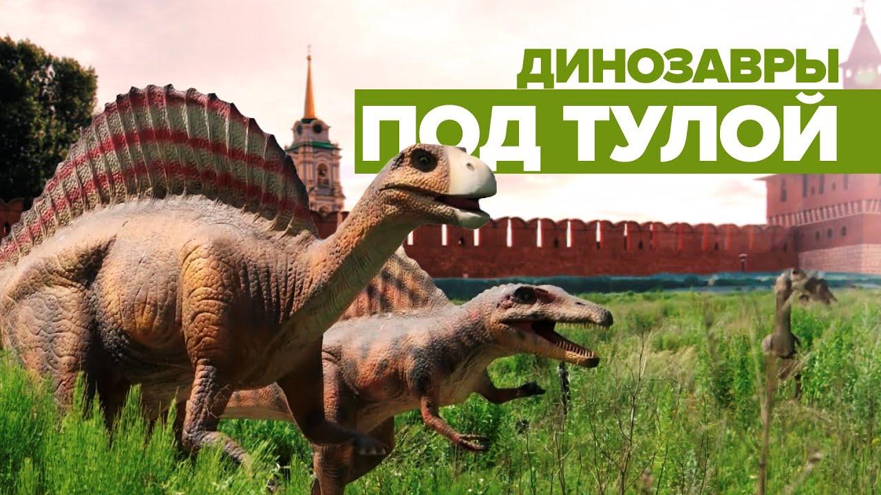 Динозавры «притулились»: недостроенный парк аттракционов под Тулой стал популярен в интернете