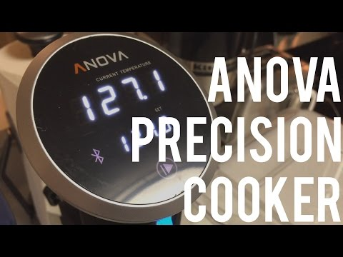 Anova Sous Vide Precision Cooker Review and Steak Test