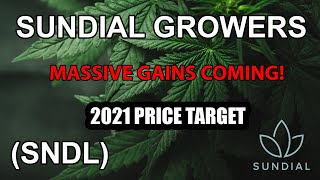 Sundial growers (sndl) stock | massive gains in 20201 i have 6100 sharesthe company had faced many challenges. the is down 94% rom a high of 13.22 i...