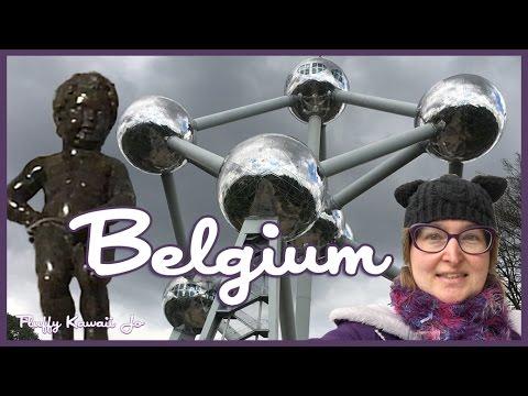 Visit of Belgium - Bruxelles - Mons - Namur - Pass - Comic book museum