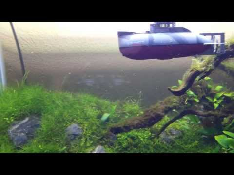 Waltersons Mini U16 RC Submarine in my planted tank