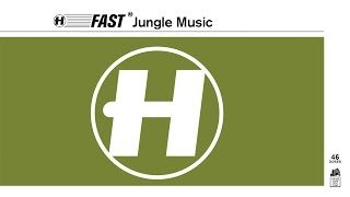 Fast Jungle Music - Mini-Mix (Mixed by Nu:Tone)