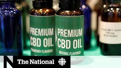 Is CBD a miracle drug or just another fad?