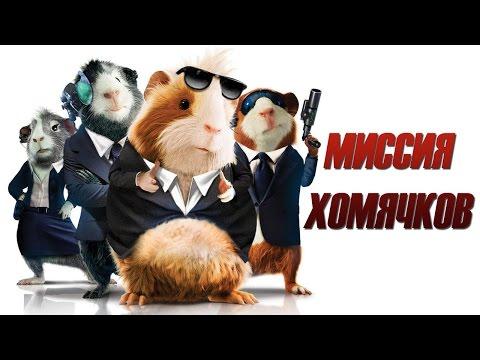 клипы про морских свинок