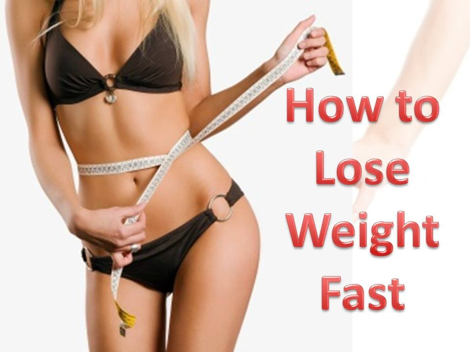 how to make your dog lose weight fast