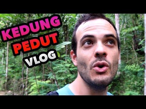 THE JUNGLE IN KEDUNG PEDUT - INDONESIA TRAVEL GUIDE BLOG #44