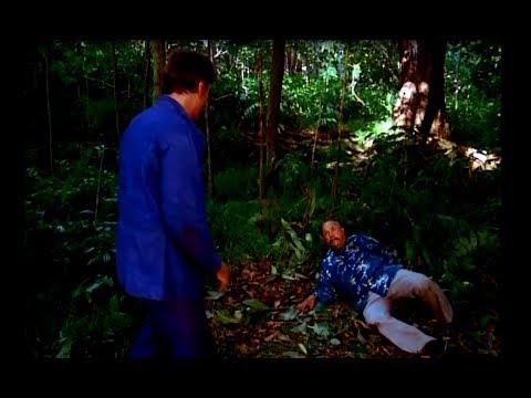 Best TV Series Finale - Hawaii Five-0 (Original) - 1980