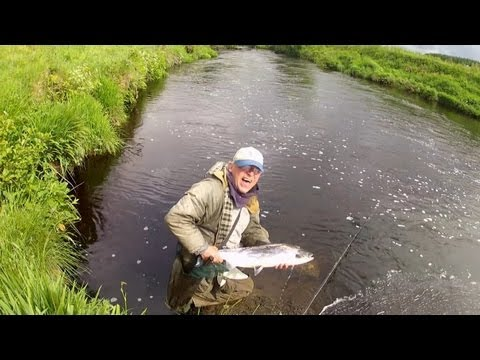 Owenea Salmon On The Shrimp Fly; County Donegal, Ireland