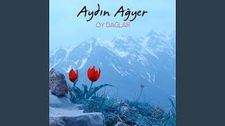 Gambar cover Düzgün Baba