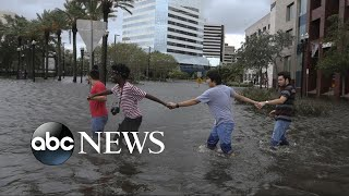 Americans respond to Hurricanes Harvey and Irma with 'Hand in Hand' benefit