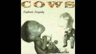Cows - Orphan