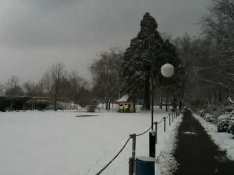 Snow in Switzerland in front of office