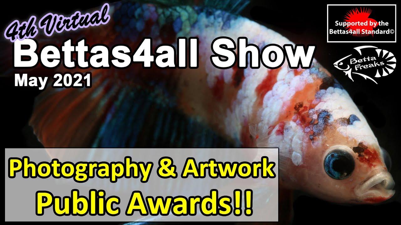 Photography & Artwork Public Awards - Virtual Bettas4all Show (May 2021)