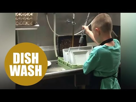 Autistic boy's dream fulfilled by washing dishes