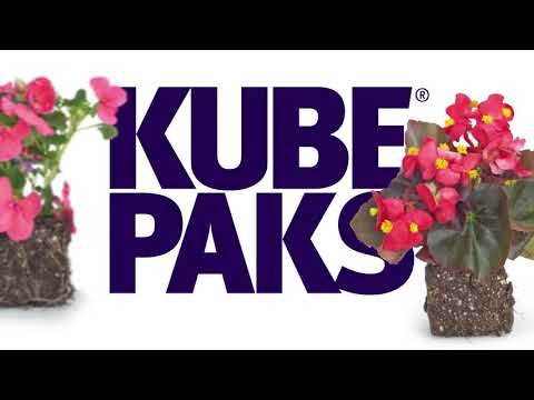 Kube Packs