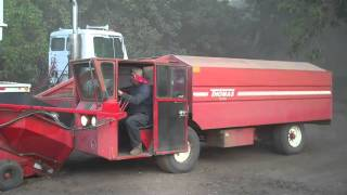 Red Bluff Walnut Harvest 10/20/2010 (part 2)