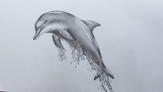 How to Sketch Dolphin screenshot 1
