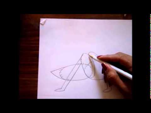 dibujo para principiantes grillo  YouTube