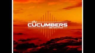 Скачать Cucumbers Take Care Of Love