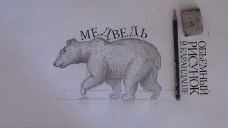 Как нарисовать медведя / How to draw bear(Сегодня мы подробно расскажем как нарисовать медведя в объеме, а главное расскажем секреты прорисовывания..., 2014-04-22T19:01:04.000Z)