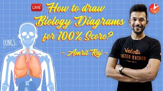 how-to-draw-biology-diagrams-for-100-score-important-diagrams-of-class-10-cbse-biology-ncert