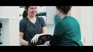 O'Connor Julian Veterinary Clinic