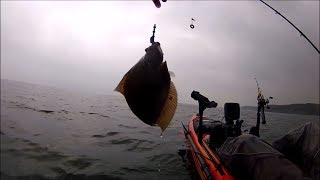 Kayak Fishing - Right Time Right PLAICE - Catch and Cook