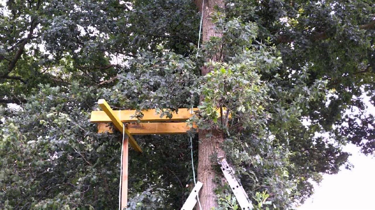 Construction d un poste fixe a pigeons dans un arbre - Fabrication glue pour chasse ...