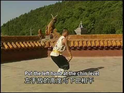Shi de Yang - 40 - Shaolin Qi Xing Quan (Seven Stars Boxing)