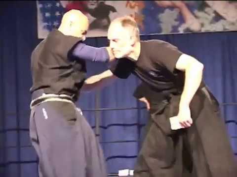 Hontai Takagi Yoshin Ryu   FunnyCat TV