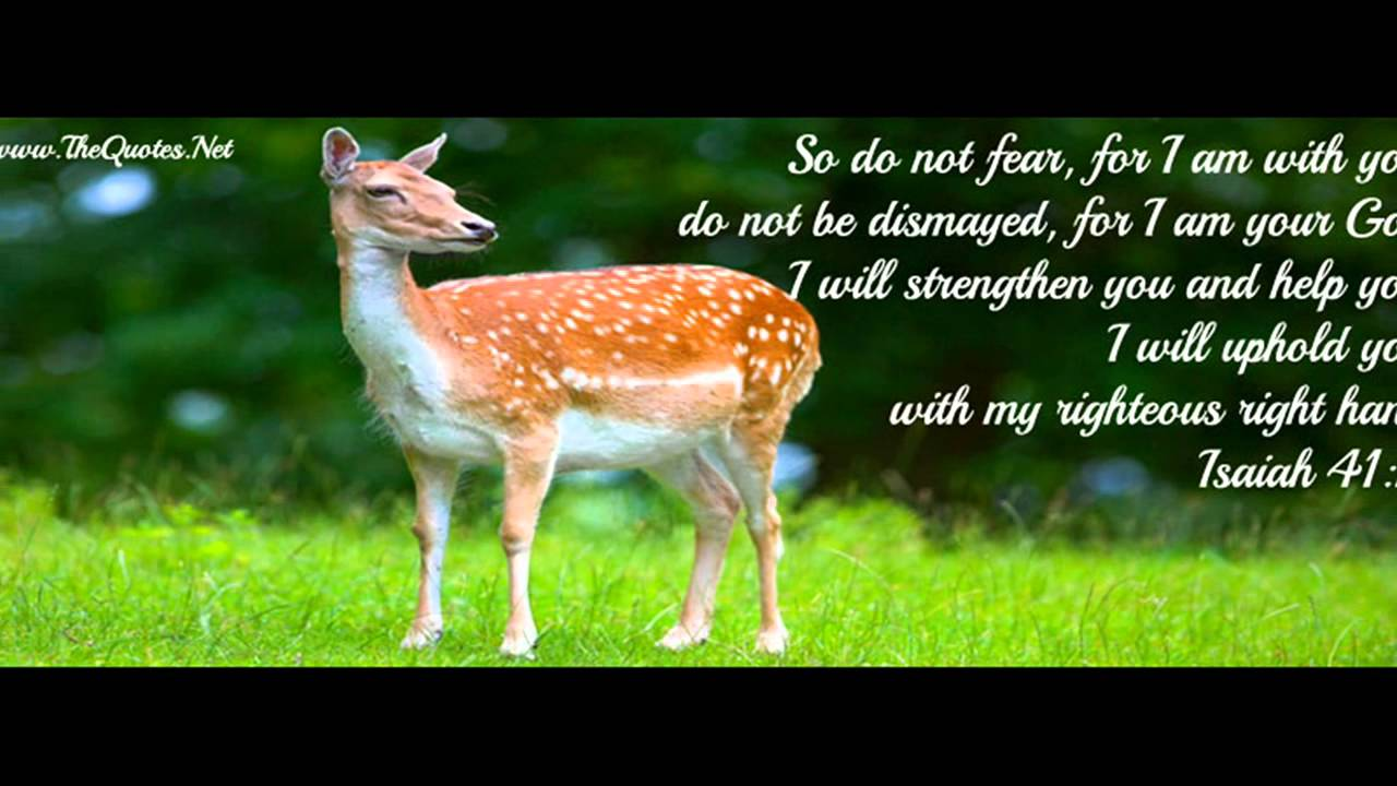 Bible Verses For Facebook Cover Youtube