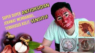 cara minum sari (ekstrak) kulit manggis yang benar secara tradisional . kulit manggis terbukti banya.