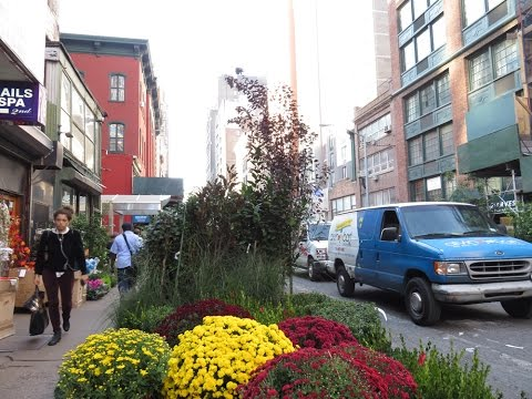 Sidewalk Jungles Of The Flower District, New York