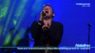 Repeat youtube video Natalino - Y Volveré ( Mix-Cam - Parque Manuel Rodriguez de Til Til, Chile - 14.02.2015 )