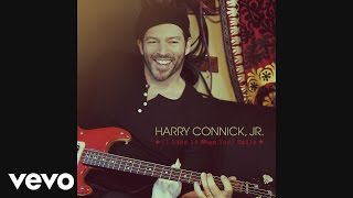 Harry Connick Jr. - (I Like It When You) Smile (Audio)
