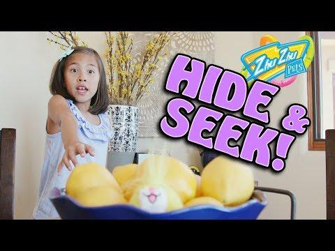 HIDE & SEEK CHALLENGE!!! Zhu Zhu Pets Gone Wild!